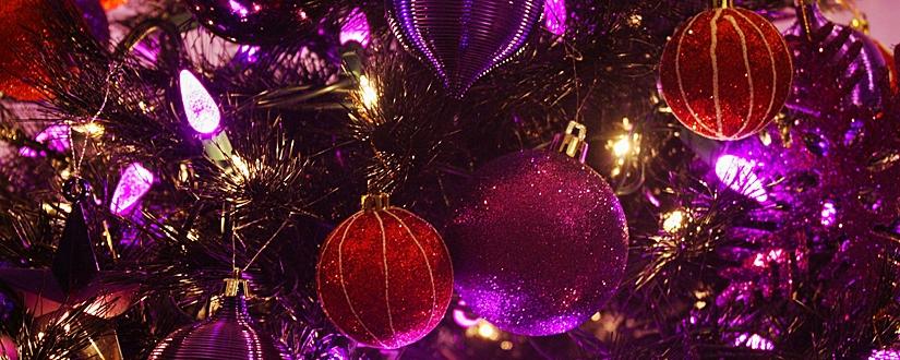 vacaciones-familia-monoparental-navidad-vilar-de-arnes