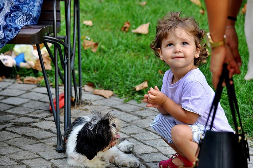 viajes-monoparentales-mascotas-en-casa